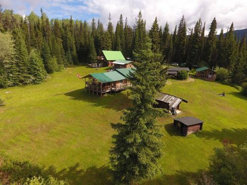 Jim-freese-moose-camp-drone-pic